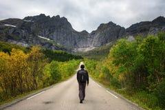 La viandante cammina su una strada scenica sulle isole di Lofoten in Norvegia Immagini Stock