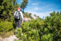 La viandante cammina sul percorso della montagna Fotografia Stock