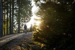 La viandante della donna che riposa su una strada della montagna, espone al sole splendere Immagini Stock Libere da Diritti