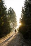 La viandante della donna che sta su una strada della montagna, espone al sole splendere Immagini Stock