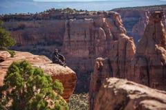 La viandante sta sedendosi sulla scogliera in monumento nazionale di Colorado, U.S.A. fotografia stock