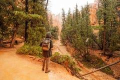 La viandante visita il parco nazionale del canyon di Bryce nell'Utah, U.S.A. immagini stock