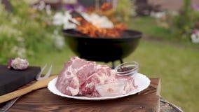 La viande crue d'un plat blanc préparé pour le gril de BBQ, gril de barbecue de charbon de bois d'arrière-cour flambe sur le fond clips vidéos