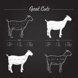 La viande de chèvre coupe le plan sur le tableau noir illustration de vecteur