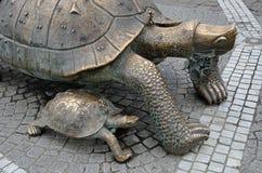 La Victoire-Schildkröte im Bordeaux Lizenzfreie Stockfotografie