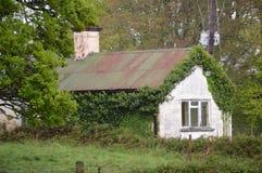 La vid cubrió la cabaña en el parque nacional de Killarney, Irlanda imagenes de archivo