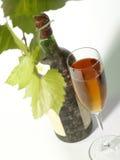 La vid y la vieja aún-vida del vino Fotografía de archivo libre de regalías