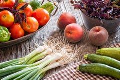 La vida de la comida todavía de la cosecha del verano tardío escogió fresco del campo fotos de archivo