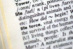 La vida de la palabra en un diccionario Imagen de archivo libre de regalías
