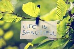 La vida es hermosa Fotos de archivo