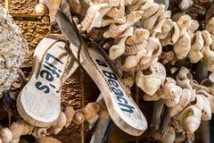 La vida es una playa Fotografía de archivo libre de regalías
