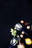 La vida inmóvil con el vino blanco en la botella de cristal en fondo negro Vidrios de vino con las uvas frescas Botella y vidrio  Fotos de archivo