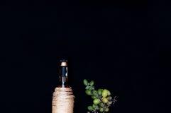 La vida inmóvil con el vino blanco en la botella de cristal en fondo negro Vidrios de vino con las uvas frescas Botella y vidrio  Fotografía de archivo libre de regalías