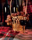 La vida inmóvil con el vino y las uvas Fotos de archivo libres de regalías