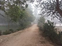 La vida le gusta un camino de niebla Foto de archivo libre de regalías