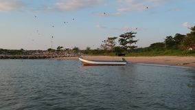 La videocamera aerea del fuco lavora muoversi in avanti verso una barca stock footage