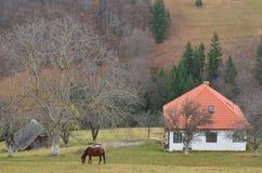 La vie à la campagne dans les Carpathiens orientaux Images stock