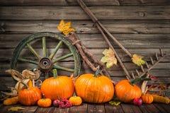 La vie automnale de thanksgiving toujours avec des potirons Images libres de droits