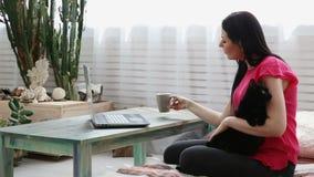 La vie avec des animaux familiers la belle fille travaille à la maison sur un ordinateur portable avec un chat noir sur ses mains banque de vidéos