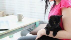 La vie avec des animaux familiers la belle fille travaille à la maison sur un ordinateur portable avec un chat noir sur ses mains clips vidéos