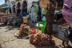 La vie d'Essaouira, Marocco photos libres de droits