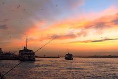 La vie d'Istanbul Photo libre de droits