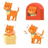 La vie de chat Aventures rouges mignonnes de chat Photos libres de droits