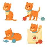 La vie de chat Aventures rouges mignonnes de chat Photographie stock libre de droits