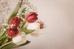 La vie de distillateur de cru avec un bouquet de ressort des tulipes Le concept du jour de mère, le jour des femmes Décorez la ma images libres de droits