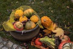 La vie de distillateur de décoration d'automne des potirons sur la rue Jour d'automne images libres de droits