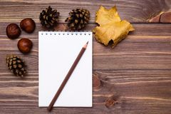 La vie de distillateur d'automne - carnet, crayon et cadeaux d'automne image libre de droits