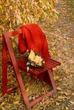 La vie de distillateur d'automne sur une chaise de jardin avec la nourriture délicieuse sur un conseil en bois Feuillage d'automn photo libre de droits