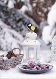 La vie de distillateur d'hiver avec le petit oiseau photos libres de droits