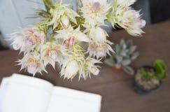 La vie de la jeune mariée de rougissement proten toujours des fleurs avec la décoration photo stock