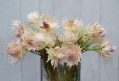 La vie de la jeune mariée de rougissement proten toujours des fleurs, fond grunge images stock