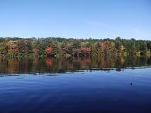 La vie de lac Photographie stock