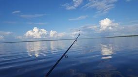 La vie de lac Images libres de droits