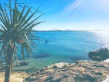 La vie de plage images libres de droits