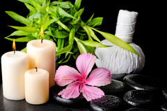 La vie de station thermale de la ketmie rose fleurissent toujours, bambou de brindille, de fines herbes thaïlandais Images stock