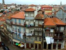 La vie de terrain communal du Portugal Image libre de droits