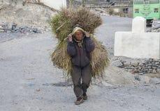 La vie dure népalaise Photo libre de droits