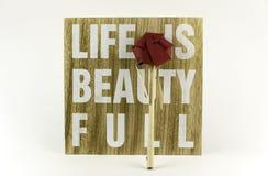 La vie est belle Photo stock