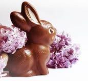 La vie immobile de fête avec le lapin de Pâques de chocolat et les fleurs lilas image libre de droits