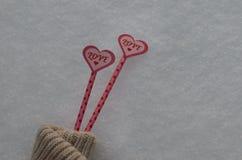 La vie l'amour de deux coeurs chauffe toujours dans la neige froide Deux coeurs roses sur la paille dans la neige, à l'intérieur  Image libre de droits