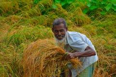 La vie rurale image libre de droits