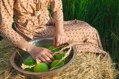 La vie rurale saine La femme dans le domaine vert Photo stock