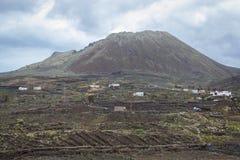 La vie sous le volcan Images libres de droits