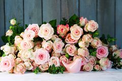 La vie toujours avec beaucoup de roses pour le jour de mères Photographie stock libre de droits