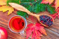 La vie toujours avec de la cannelle de thé et le citron, pommes mûres, l'érable rouge d'automne part, branche de sapin et baies d photo stock