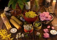 La vie toujours avec des bougies, des herbes curatives et des fleurs Photo libre de droits